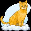 Rocky the Angel Cat