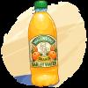 Bottle of Squash