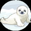 Fluffy Baby Seal