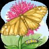 Golden Monarch Butterfly