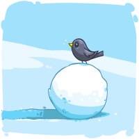Medium Snowball