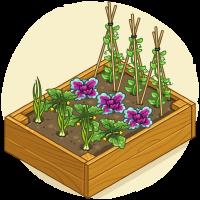 Box Bed (2)