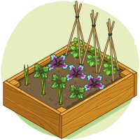 Box Bed (1)