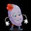 Mrs Indigo Potato