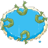 Frog Water Ballet