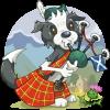 Doggonefun Scotland