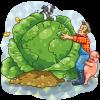 Giant Organic Cabbage